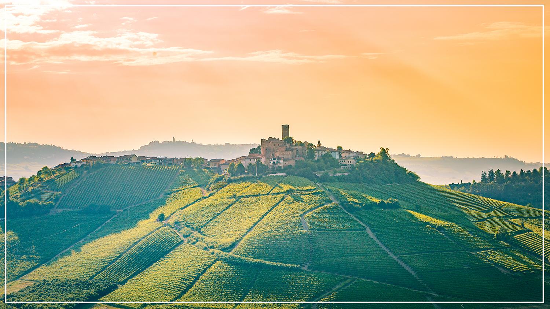 Taste of Piedmont 2018