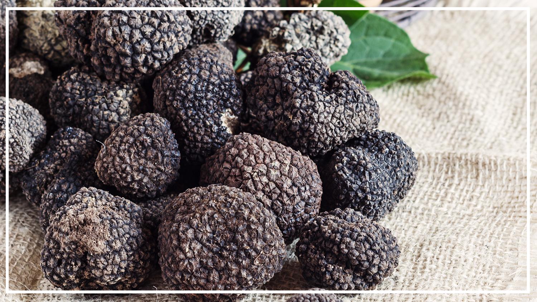 spring truffle 2019